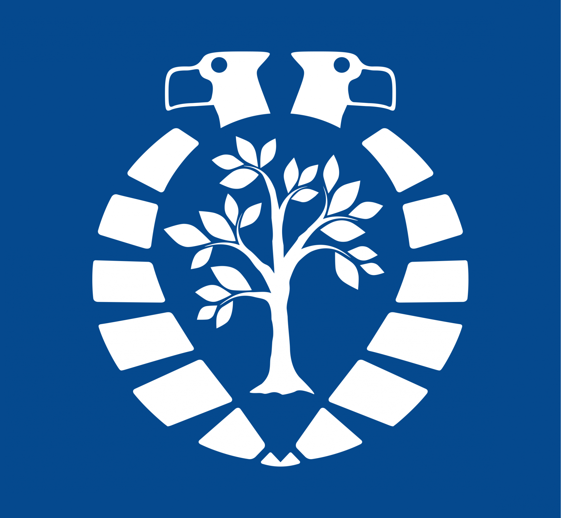 Arnhem Klimaatbestendig gemeente arnhem klimaat grafisch ontwerp dana dijkgraaf DDD logo